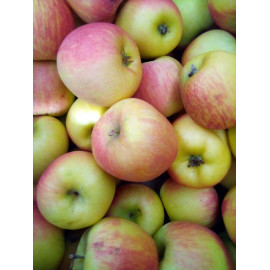 Mélange De Pommes - 1KG