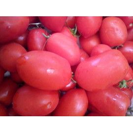 Tomate 1kg